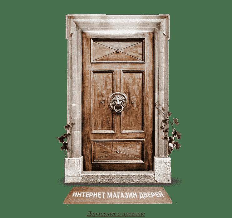 internet_magazin_dverei