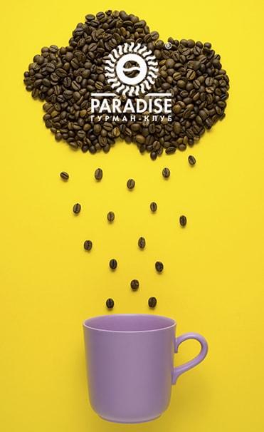 создание сайта для ТМ Paradise